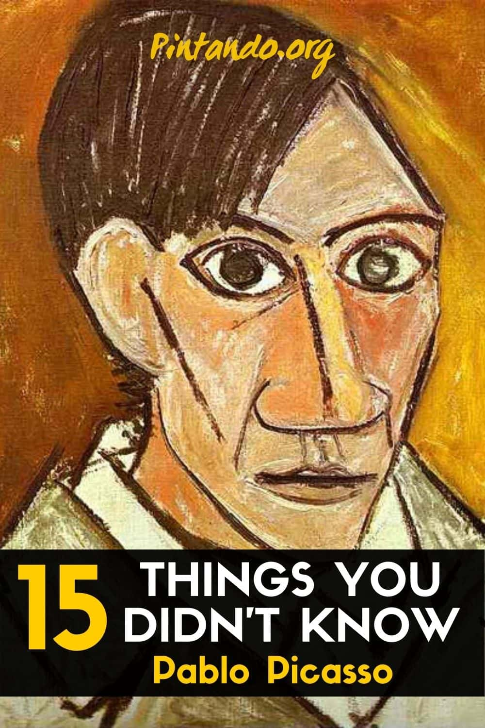 15 Things You Didn't Know About Vincent Van Gogh (3)-min