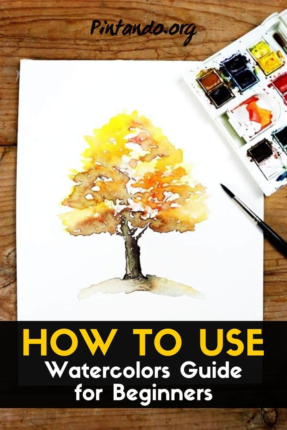 HOW TO USE WATERCOLOR _ Guide for Beginners-min