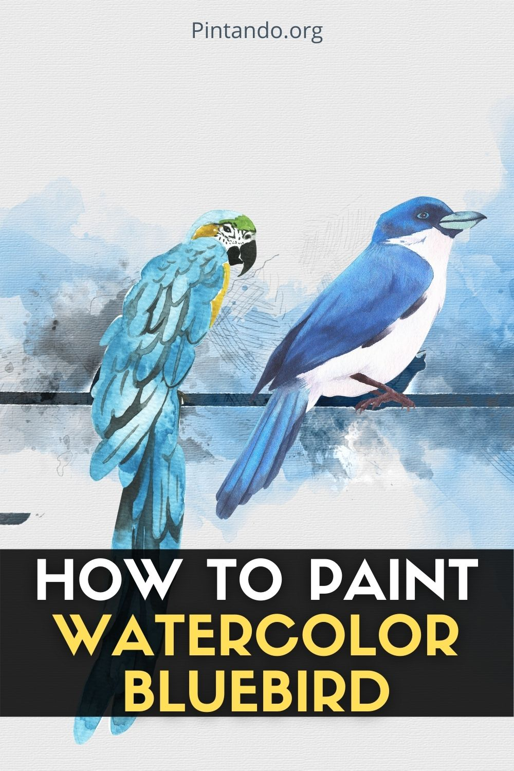 HOW TO PAINT WATERCOLOR BLUEBIRD