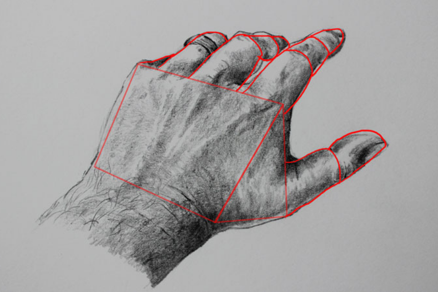 HOW TO DRAW A REALISTIC HAND (1)