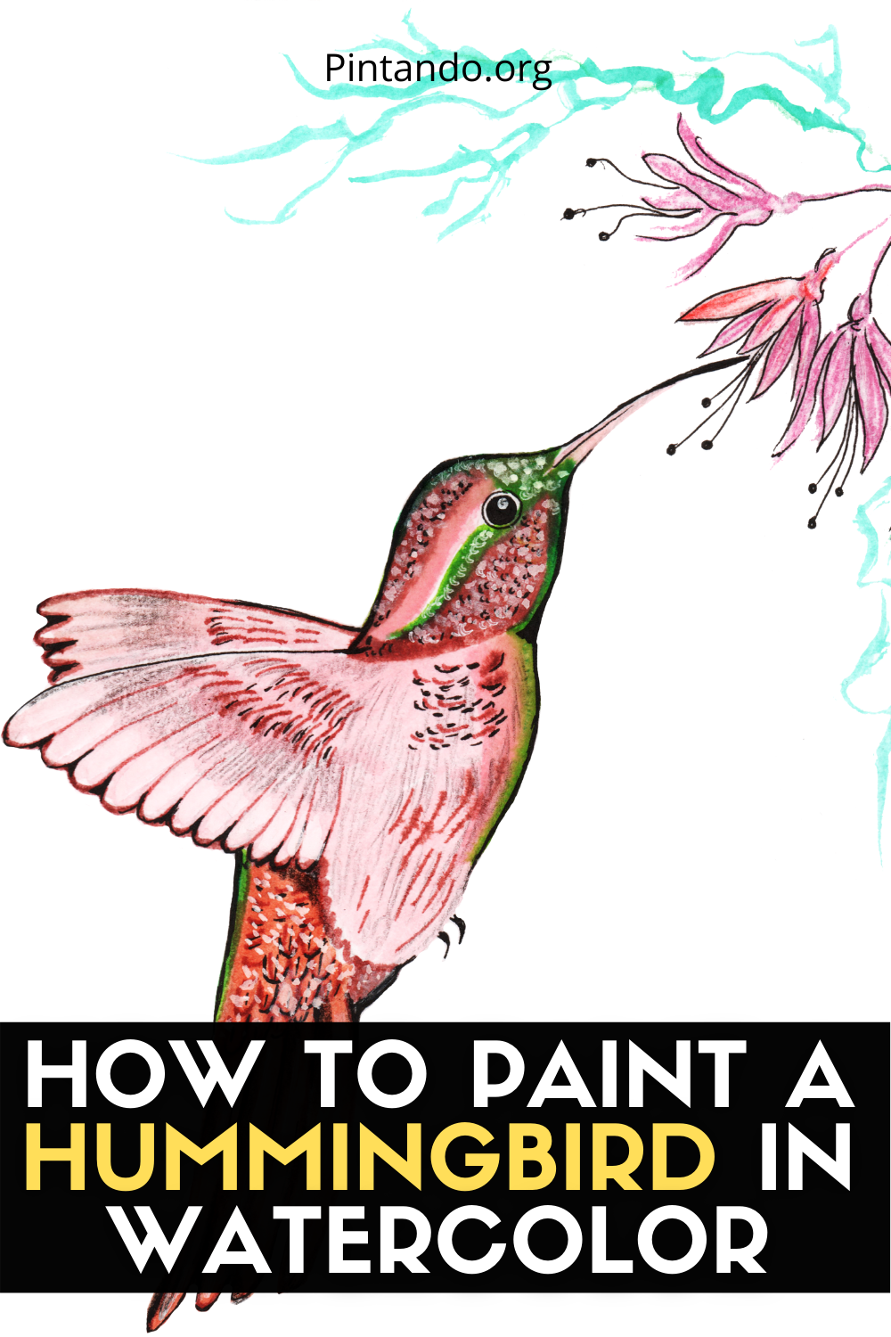 HOW TO PAINT A HUMMINGBIRD IN WATERCOLOR