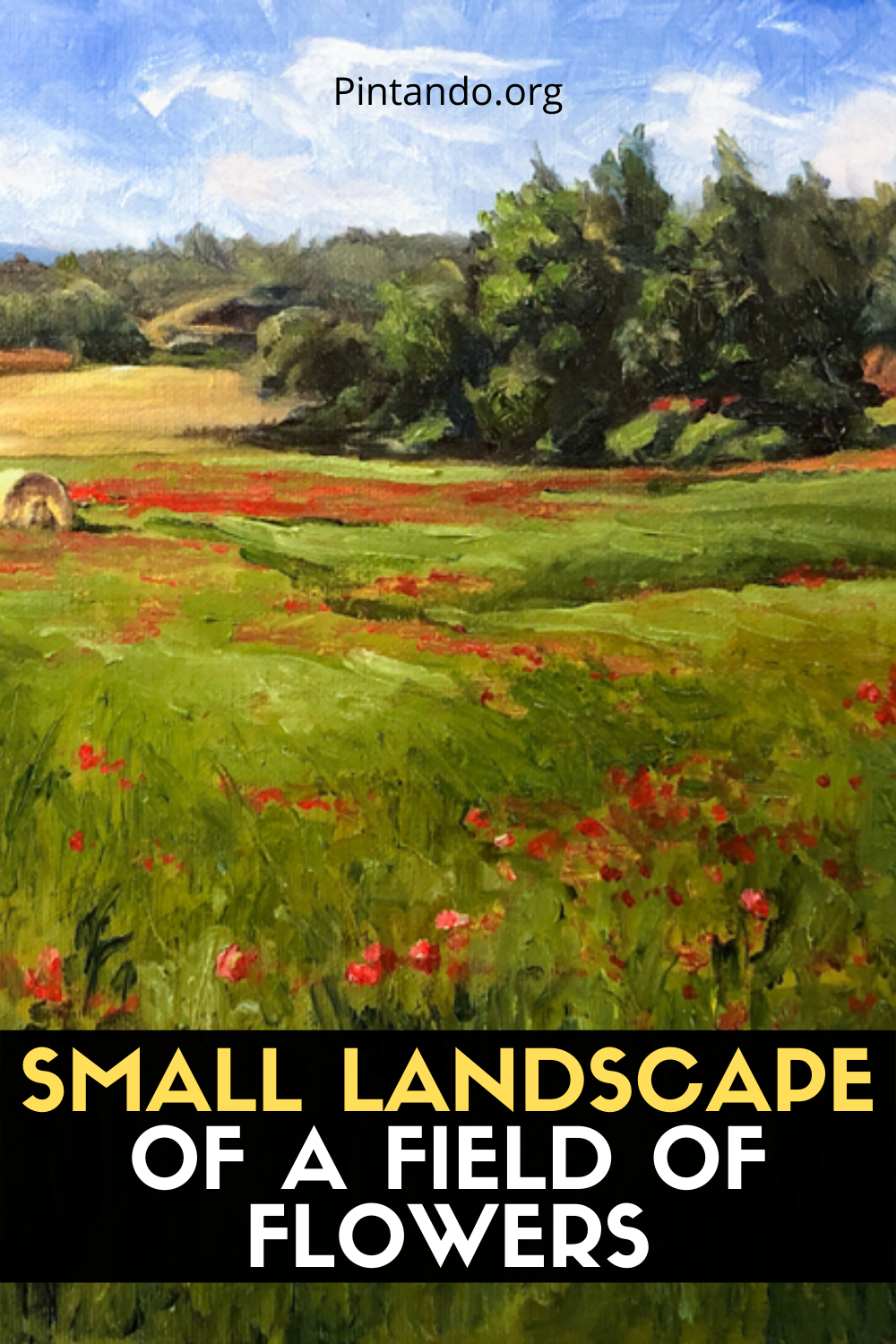 SMALL LANDSCAPE OF A FIELD OF FLOWERS